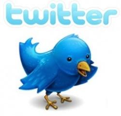 Twitter Most Popular Social Media Channel For FTSE 100   Dominic Jones